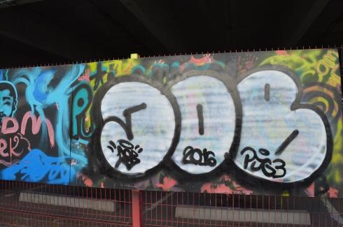 DSC_0990